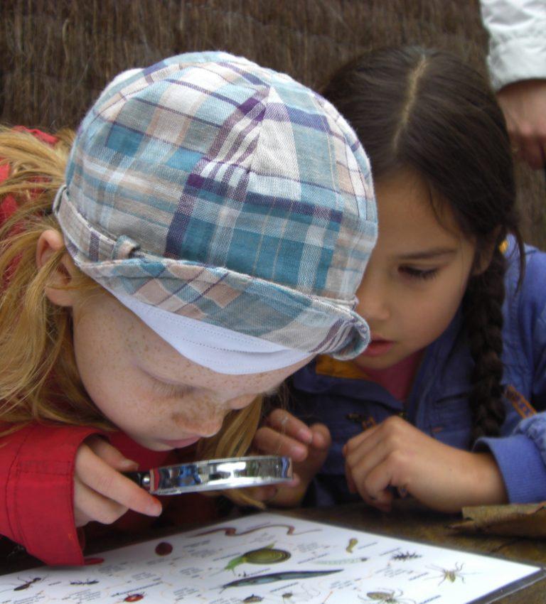 Educatie programma - NME-Centrum en Kinderboerderij De Elzenhoek
